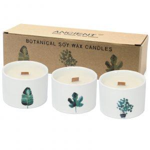Pack of 3 Med Botanical Candles – Japanese Garden