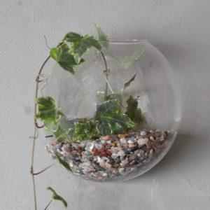 All Glass Terrarium -Small Hanging Wall Bowl