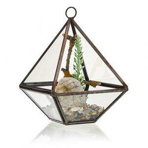 Glass Terrarium – Small Diamond