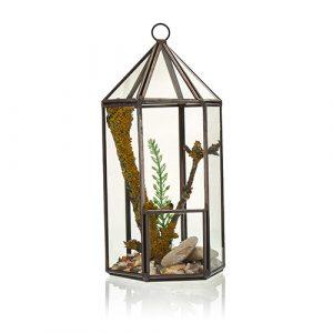 Glass Terrarium -Lantern Shape