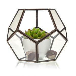 Glass Terrarium -Large Octagon