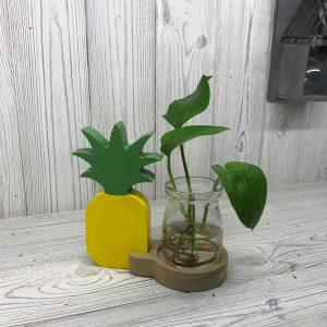 Hydroponic Home Decor – Pineapple Pot