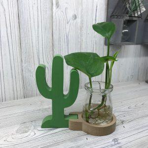 Hydroponic Home Decor – Cactus Pot