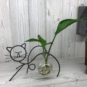 Hydroponic Home Decor – Cat