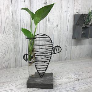 Hydroponic Home Decor – Cactus & Lab Pot