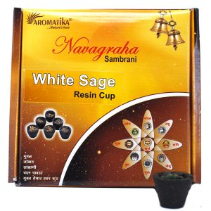 Box of 12 Resin Cups – White Sage