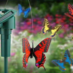 Solar Butterfly (colours may vary)