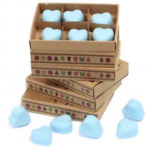 Box of 6 Wax Melts – Dewberry
