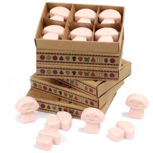 Box of 6 Wax Melts – Ginger
