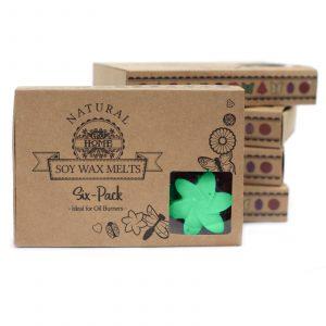 Box of 6 Wax Melts – Hidden Garden