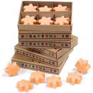 Box of 6 Wax Melts – Mango Fruits