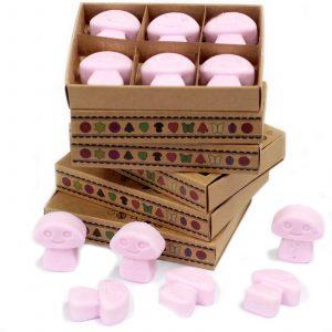 Box of 6 Wax Melts – Ylang Ylang